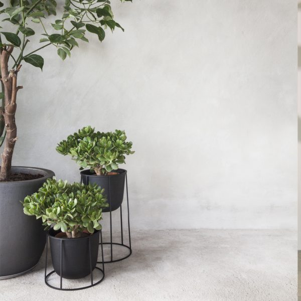 wire pot black small medium