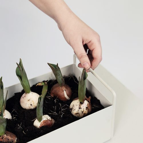 FERM LIVING, Plant box - lysegrå, lille