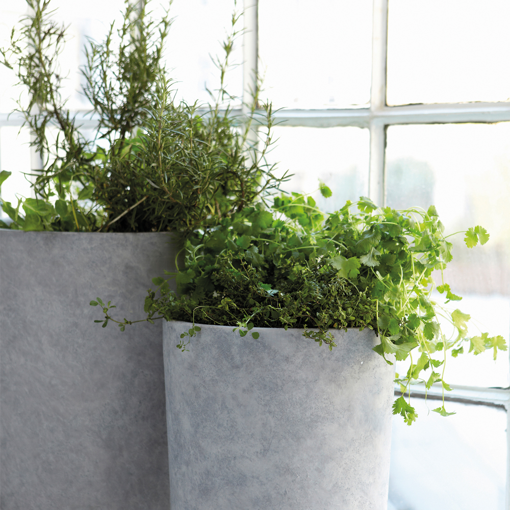 green krukker grønne planter housedoctor beton concrete greenliving