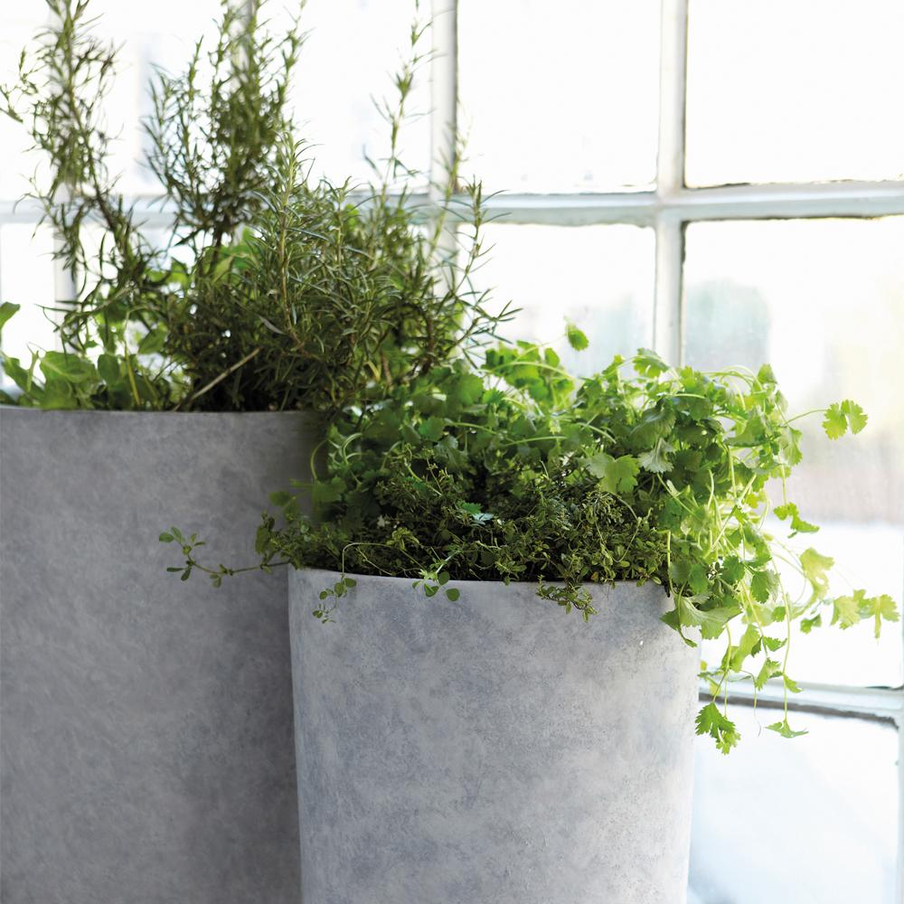 green krukker grønne planter housedoctor beton concrete greenliving