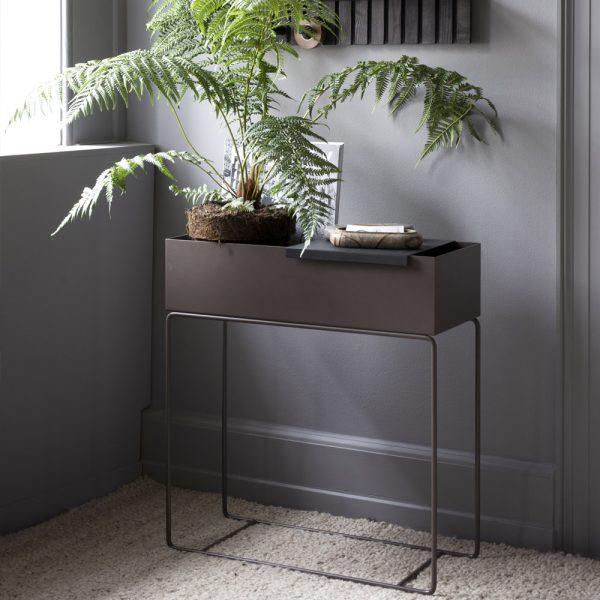 new color plant box_