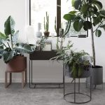 plant boxes